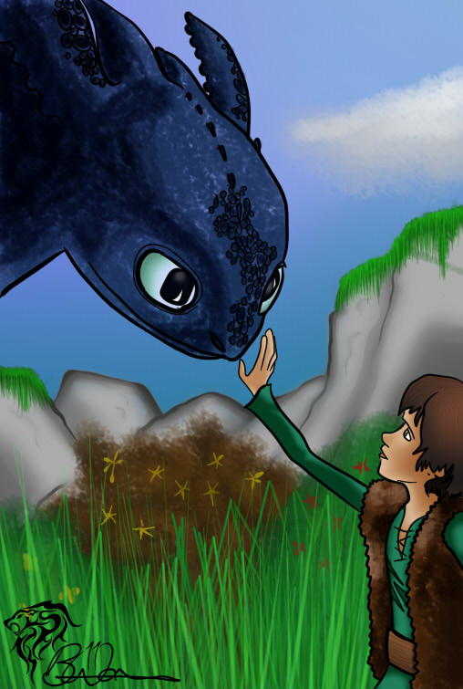 How To Train Your Dragon: Toothless & Hiccup